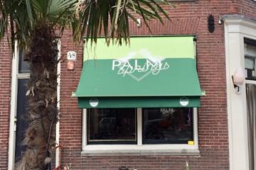 Palmsprings Amsterdam