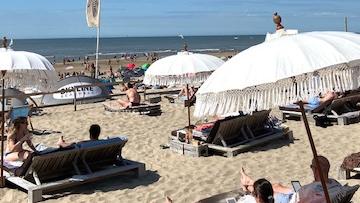 Noosa Zandvoort aan Zee